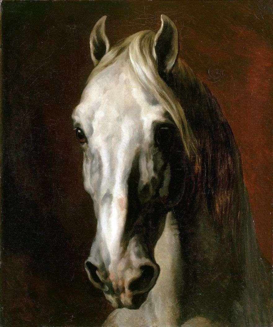 رأس الحصان الأبيض   تيودور جيريكولت