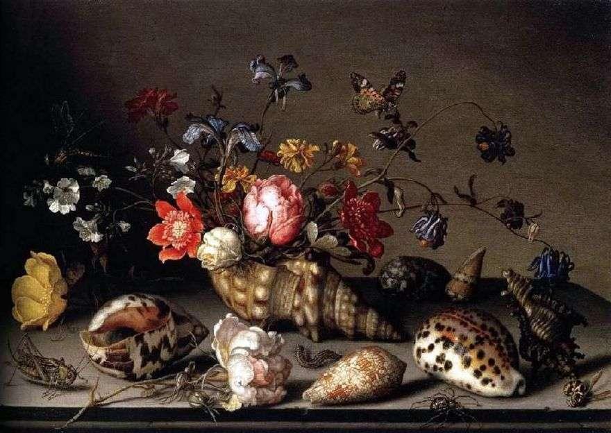 لا تزال الحياة: الزهور ، والأصداف ، والحشرات   Balthazar van der Ast