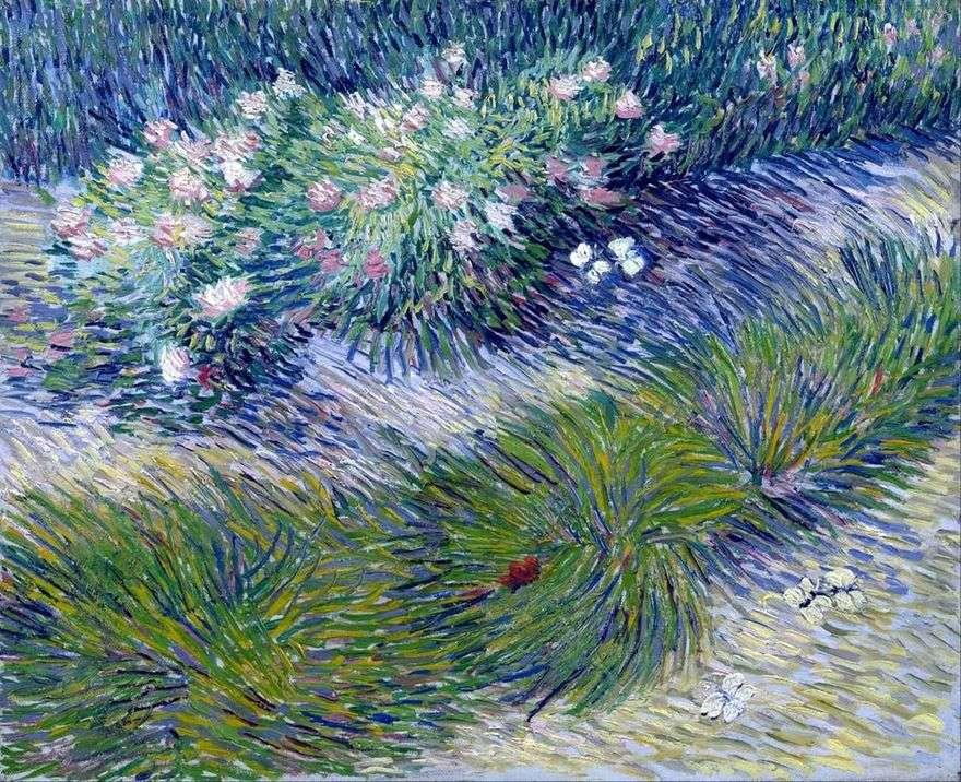 العشب والفراشات   فنسنت فان جوخ