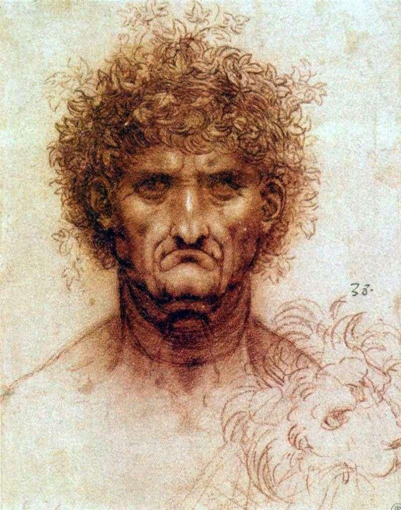 رأس رجل وأسد   ليوناردو دافنشي