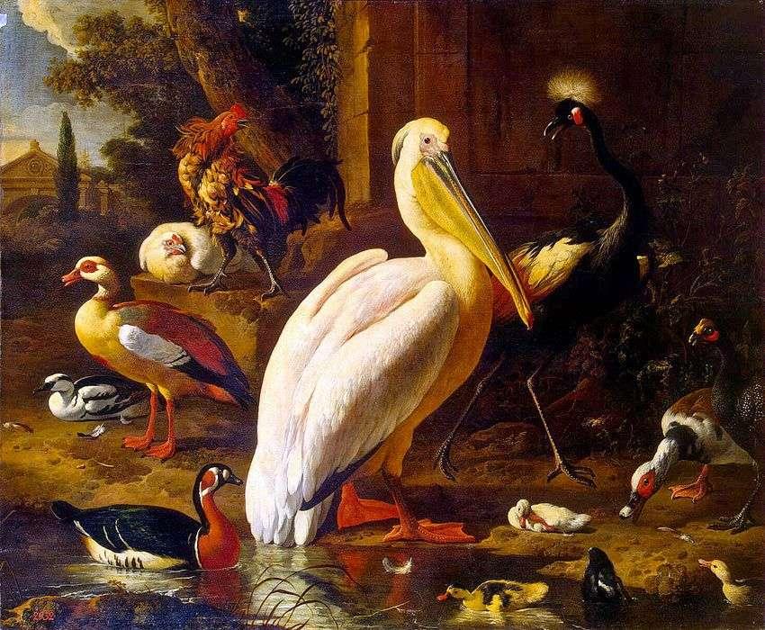 الطيور في الحديقة   Melchior دي Hondekuter