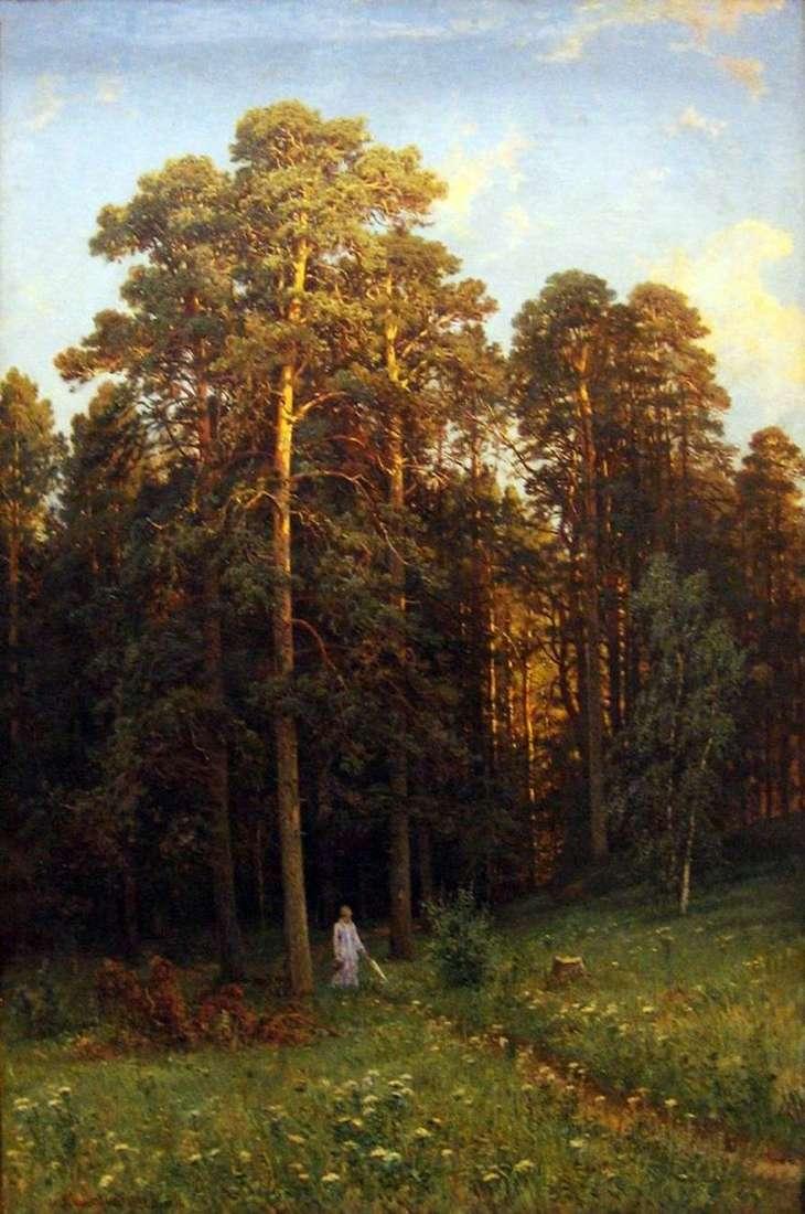 على حافة غابة الصنوبر   شيشكين