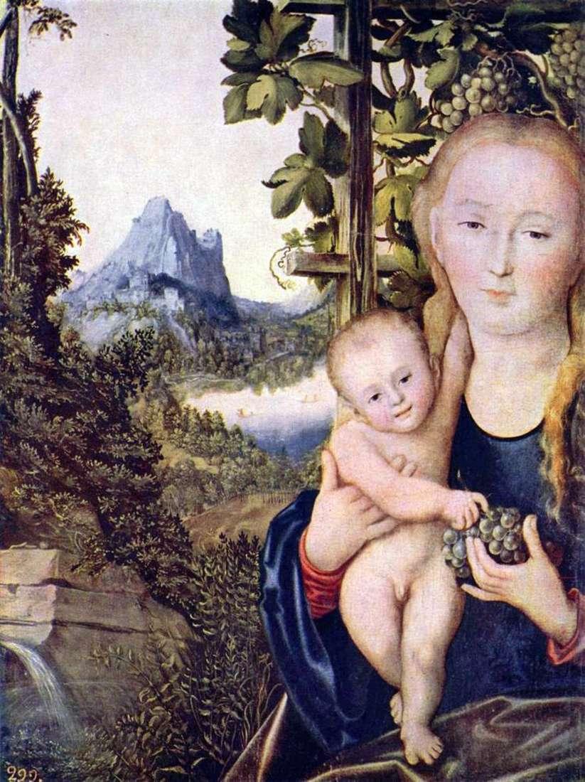 مادونا والطفل   لوكاس كرانش