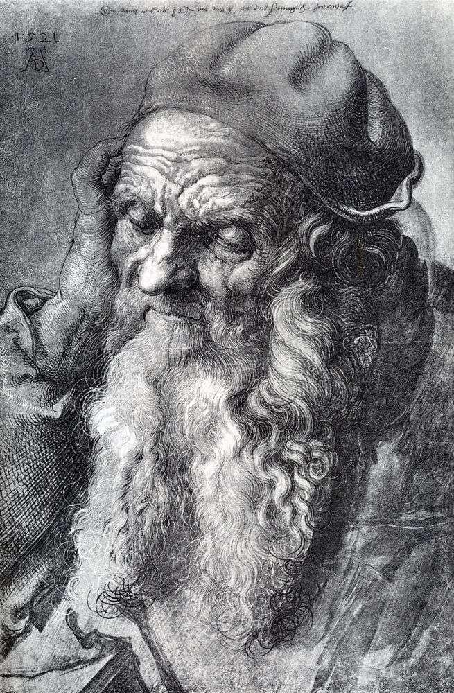 دراسة رجل يبلغ من العمر 93 عامًا   Albrecht Durer